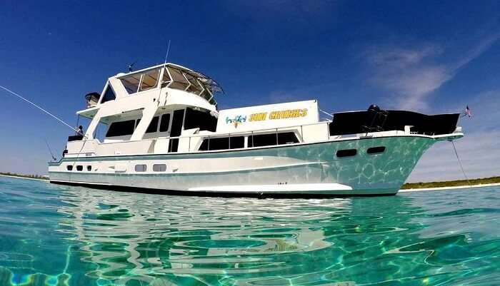 H2Oh-Cruises