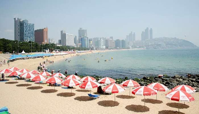 Haeundae Beach View