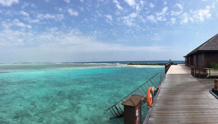 Paradise Island The Sea Maldives