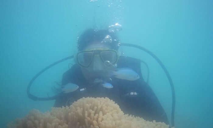 experience the underwater marine life