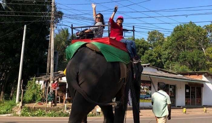 took elephant ride