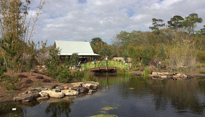 Jacksonville_Zoo_