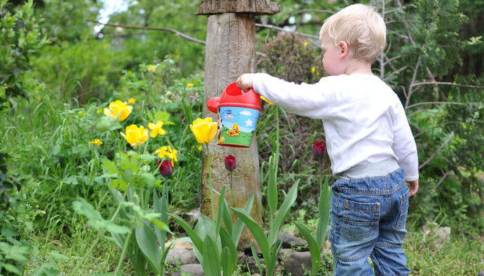 Jacob Ballas Children Garden
