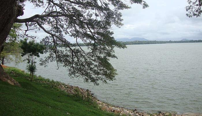 Kala Wewa Lake