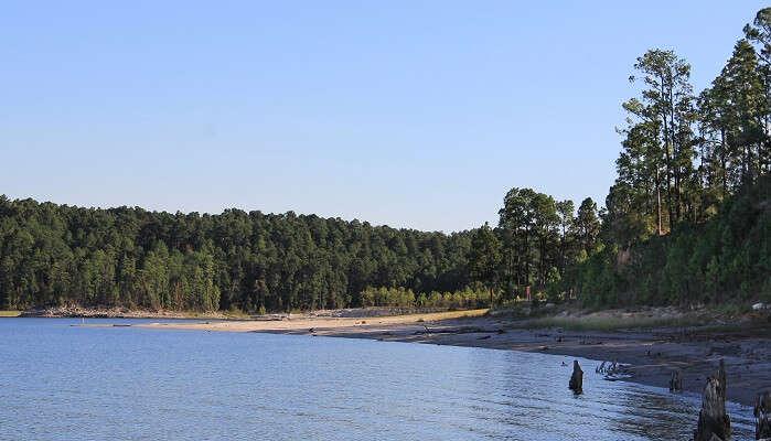 Sam Lake Sam Rayburn