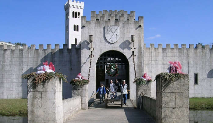Newman's Castle Bellville