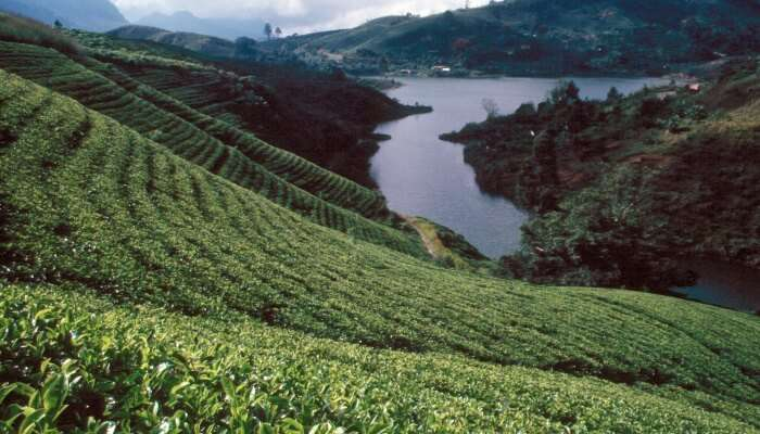 Nuwara Eliya in Sri Lanka