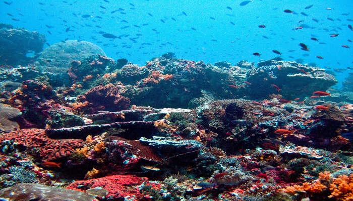 Padang_Padang_Beach_