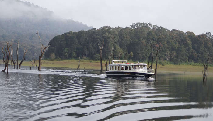 Periyar_Lake_-_Boat_Ride_