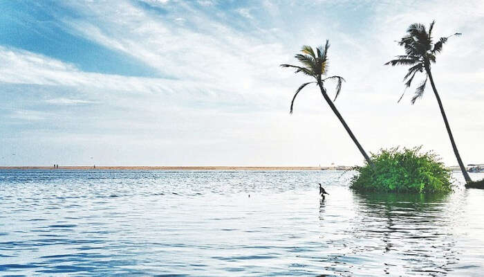 Poovar In Kerala