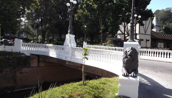 Road To Petrópolis From Rio De Janeiro