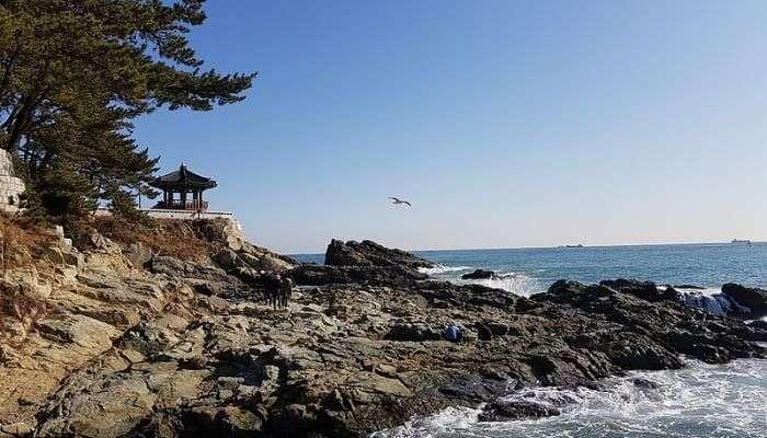 Songdo Beach In Busan