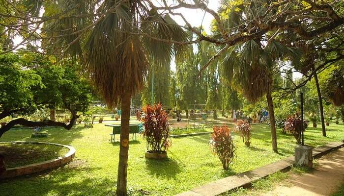 Subhash Bose Park View