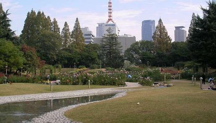 Utsubo Park In Osaka