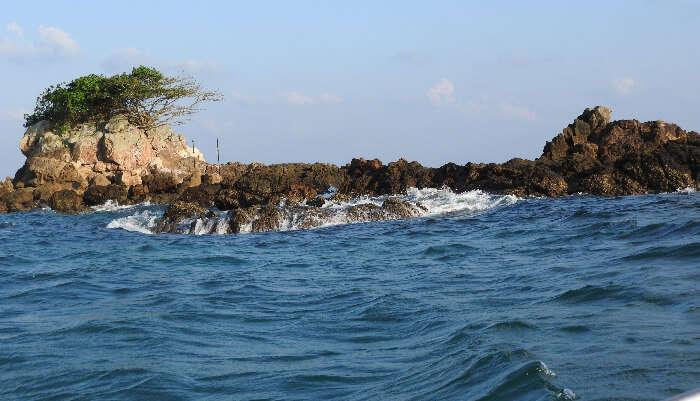Visit the Snake Island