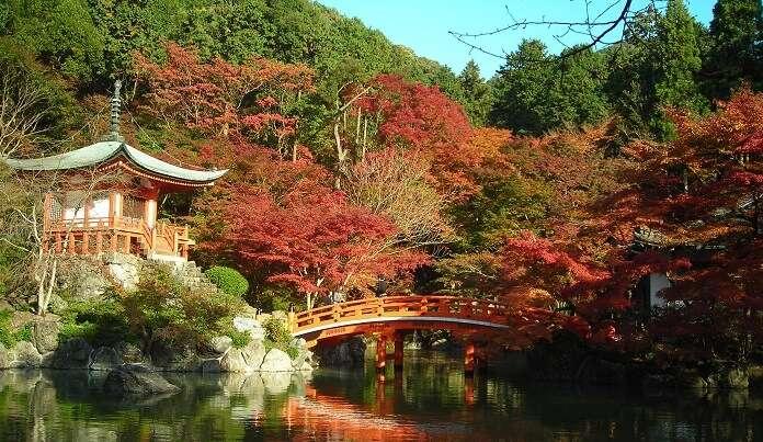 Weather In Kyoto In November
