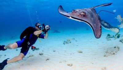 Cayman Islands Travel Tips