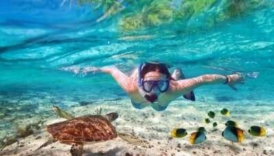 Adventurous Snorkelling In Austin