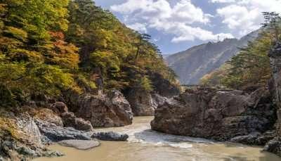 Best Tokyo National Parks
