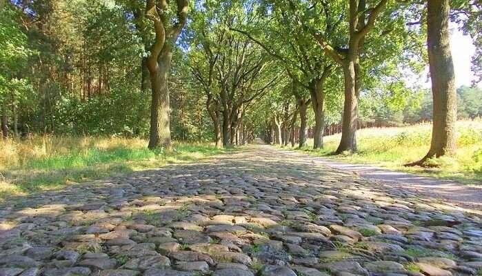 rome cobblestone road garden