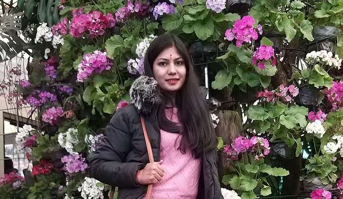 in flower garden