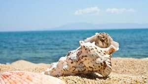 Acquafredda di Maratea Beach in Italy