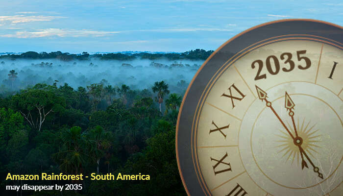 Amazon Rainforest - South America