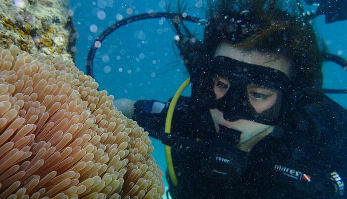 Best Time For Scuba Diving