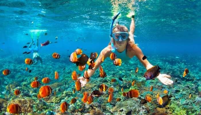 Adventurous Snorkelling In Andaman