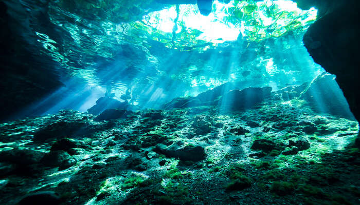Awesome Cenote In Mexico