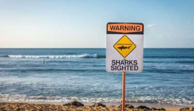 Dangerous Beaches