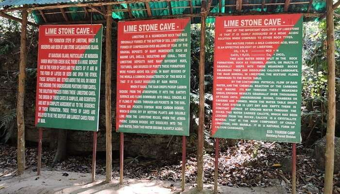 Facts About Limestone Caves In Andaman