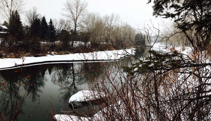 Winter Elbow River Calgary