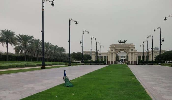 at Zabeel palace