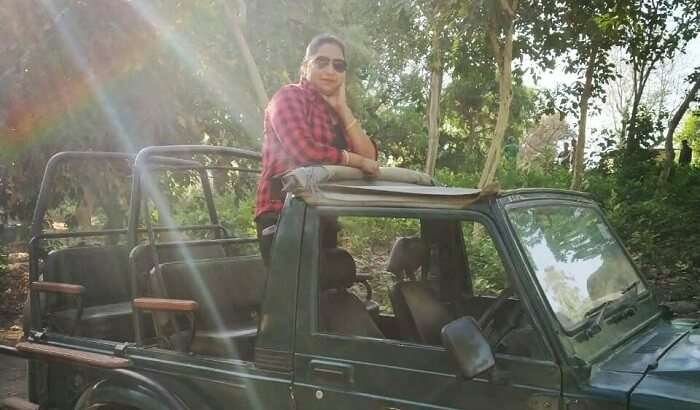 safari ride in the lap of nature