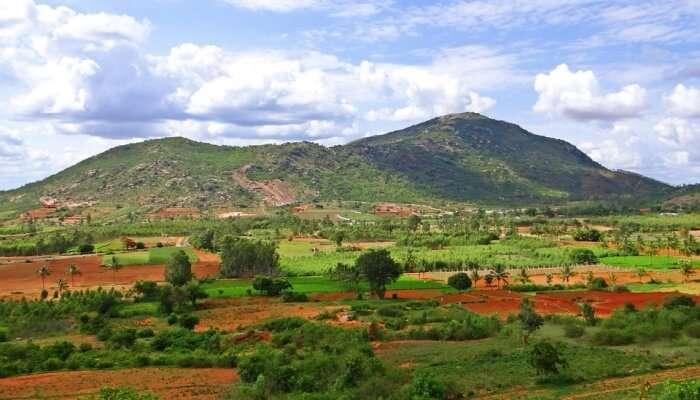 Nandi Hills View
