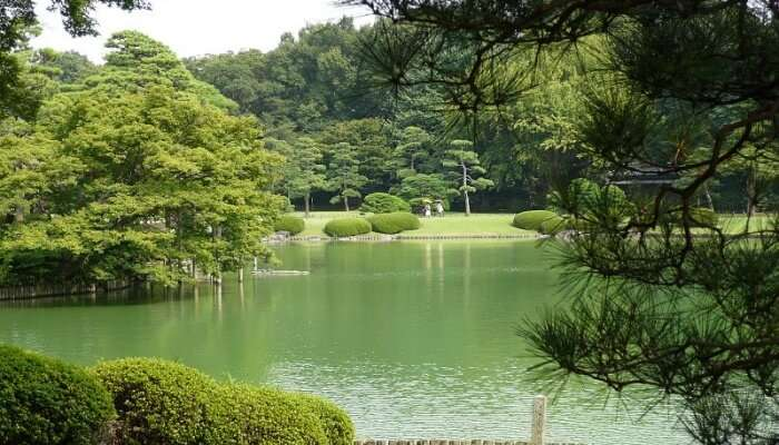 Rikugien Garden View