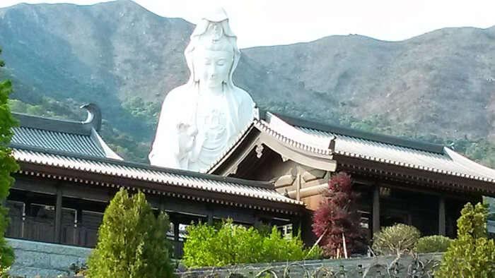 Tsz Shan Monastery- Visit