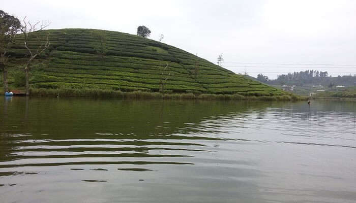 Vagamon Lake View
