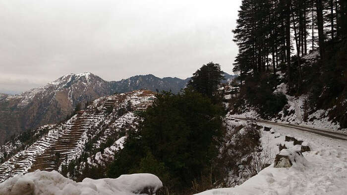 Weather In Mussoorie In December
