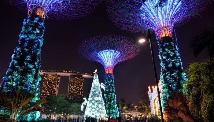 Why Visit Singapore In December