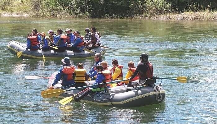 cherating river cruise