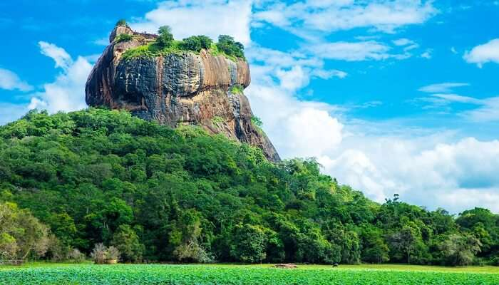 cover - Places To Visit In Sigiriya Matale