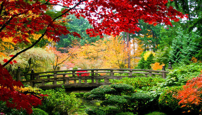Beautiful Gardens In Japan