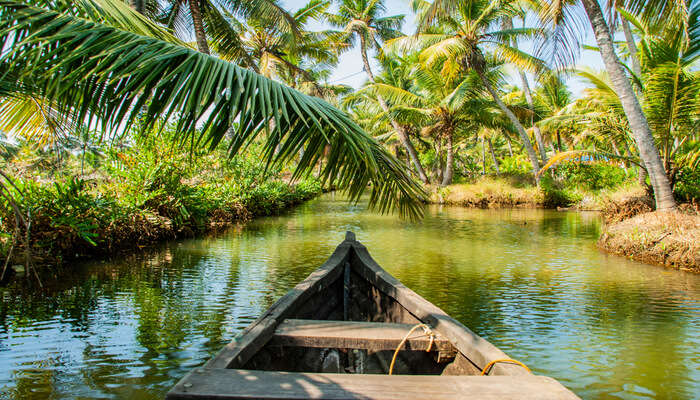 Electrifying Things To Do In Kollam