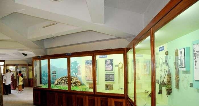 Basic Details Of Anthropological Museum Port Blair