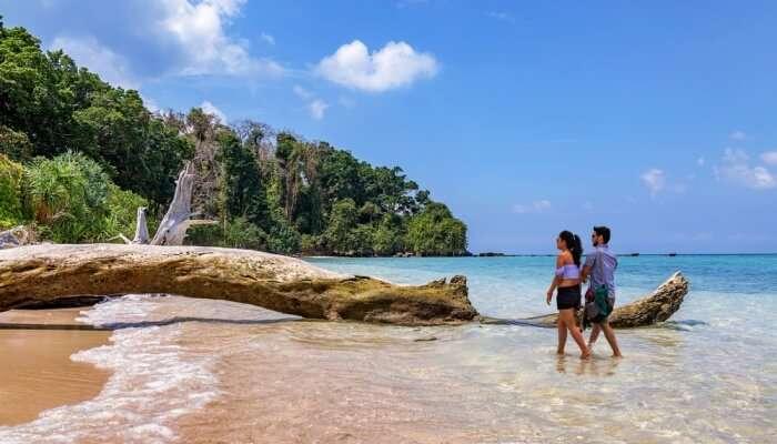Best Time To Visit Mahatma Gandhi Marine National Park