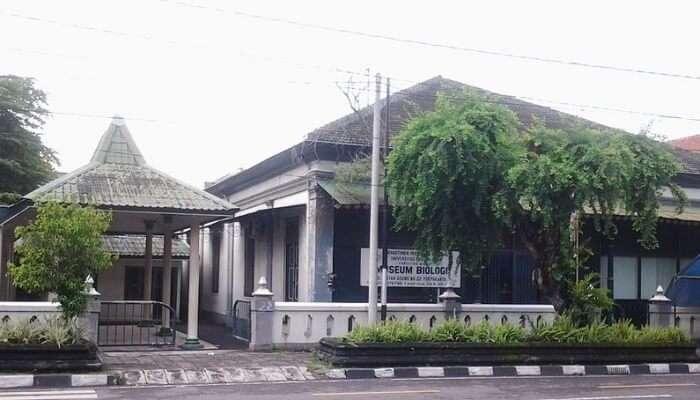 Biology Museum In Yogyakarta