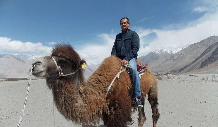 I enjoyed camel rides