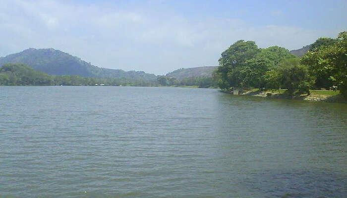 Habarana Lake In Sri Lanka